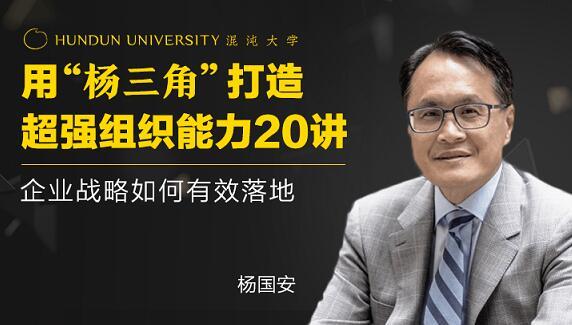 杨国安《打造超强组织能力20讲》企业战略如何有效落地