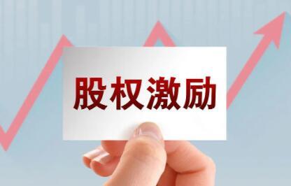 李利威《股权激励训练营》培训讲座第3期,零基础30个案例搞定股权激励