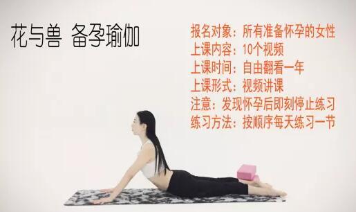花与兽瑜伽课程《备孕瑜伽》教程视频